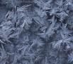 A frozen window - (3727)
