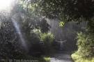 At Victoria Falls, Zimbabwe - (4537)