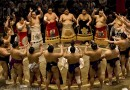 Sumo wrestling in Tokyo - (5008)