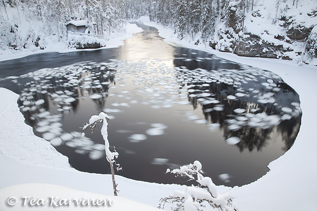 Oulanka / winter