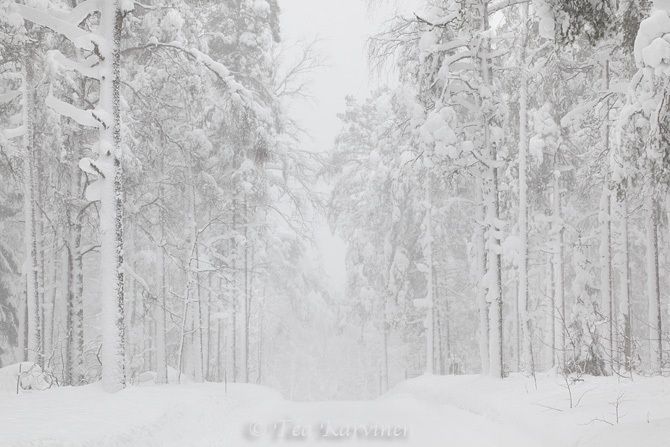 Lauhanvuori / winter