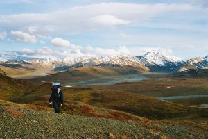 349 – Hiking lots of times in Denali National Park, Alaska. I worked for 2 summers next to the park.