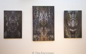 photo of the week 18 - some images of my national park exhibition