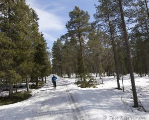 photo of the week 20  - still skiing in May in Rovaniemi, Lapland