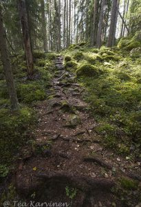 5948 – Nature trail of Nahkiaissalo