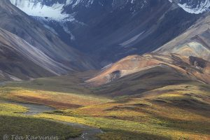 6192_Alaska
