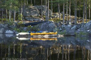 7418 - Camping on the island of Vaajasalo