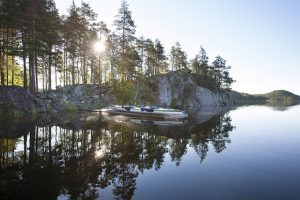 7438 - Camping on the island of Vaajasalo