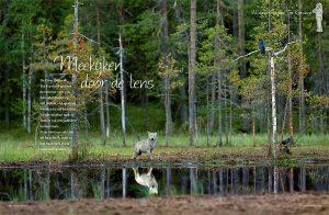 Seasons_p1_Dutch_magazine