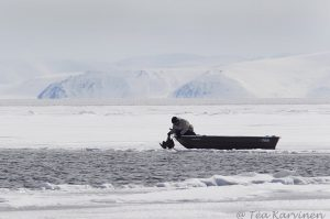 272 – A young guy Apak hunting a goose outside Pond Inlet