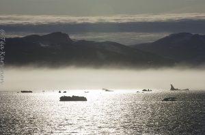 8088 – Sermilik fjord in East Greenland