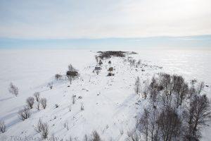 1017 – Island of Selkä-Sarvi