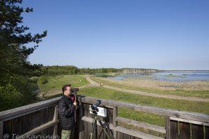487 – South end of the Puurijärvi lake