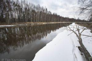6658  – Ala-Kauvatsanjoki river