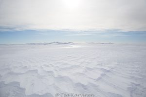976 – Island of Selkä-Sarvi