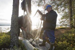 3068 – On the shores of Suomunjärvi lake  – Kuikkaniemen kalamajan rannassa Suomunjärvellä