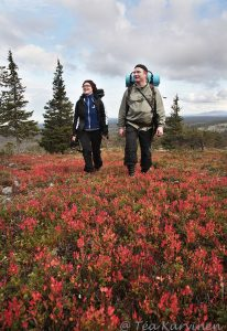 1240 – Hiking in Luosto