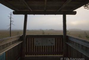7435 – Heikinjärvennevan lintutorni