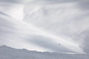 photo of the week 14 (Pallas-Yllästunturi National Park)