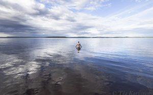 6898 – Rykiniemen virallinen uimaranta ja telttailualue