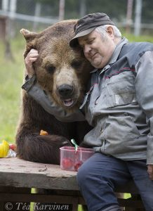 photo of the week 26 – (Sulo ja Juuso-bear)