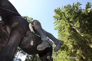 Lea Gršnlund laskeutuu alas hevosen selŠstŠ.