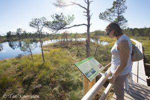 Photo of the week 34 – (Kemeri National Park in Latvia)