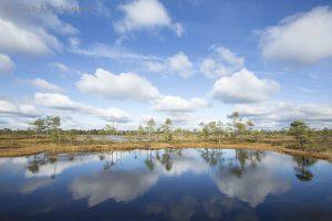 photo of the week 39 – (Kauhaneva-Pohjankangas National Park)