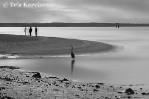 photo of the week 7 – (Crescent beach in Canada)