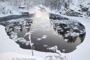 photo of the week 5 – Oulanka National Park