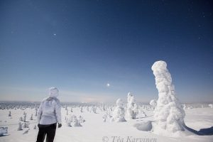 photo of the week 5  – Riisitunturi National Park, Finland
