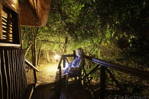 7423 –  wildlife safari experiences in southern Africa