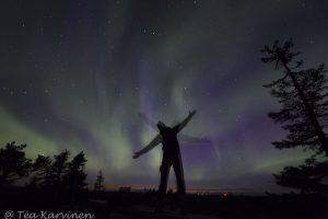 7710 – Northern lights (aurora borealis) in Riisitunturi National Park in September.