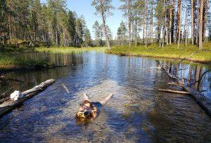 Tea working in Hossa National Park. Photo by Anne Mäkinen.