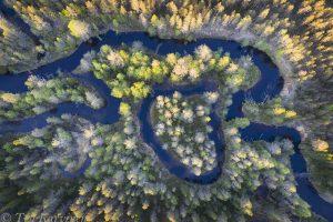 418 – Suomunjoki river, Lieksa (on the border of Patvinsuo National Park)