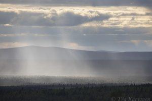 photo of the week 26 (Lemmenjoki National Park)
