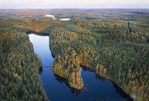 203 – Kurkijärvi lake & Kannuslahti