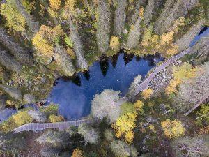 161 – Pyhä-Luosto National Park