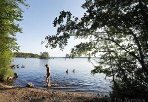2761– Swimming on the shores Lammassaari island
