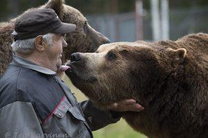 4876 – Kuusamon Suurpetokeskus: Sulo ja Juuso-karhu ovat parhaimmat ystävykset (vuosi 2013)