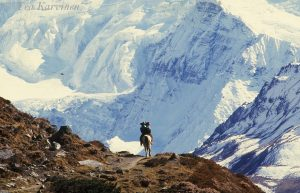 158 – Hiking in Nepal in the Himalayas