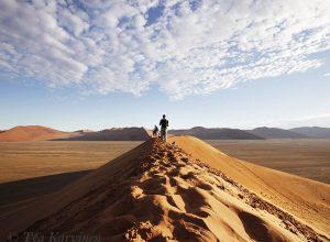 5387 – Dunes of Namibia