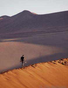 5398 – Dunes of Namibia