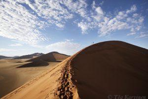 5456 – Dunes of Namibia