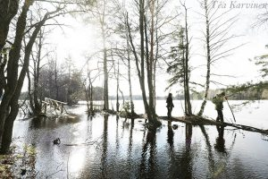 6795 – Kyynäränharju ridge covered partly with water beginning of March (2020)