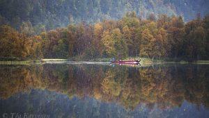 7650 – Lemmenjoki National Park