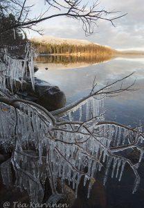 9653 – Lake Pallas (järvi) in November