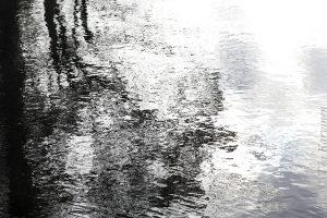photo of the week 10 – Flooding in Liesjärvi National Park