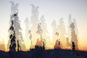 photo of the week 8 – Sunset colors in Pallas-Yllästunturi National Park