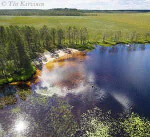 986-987 – Tiilikkajärvi National Park